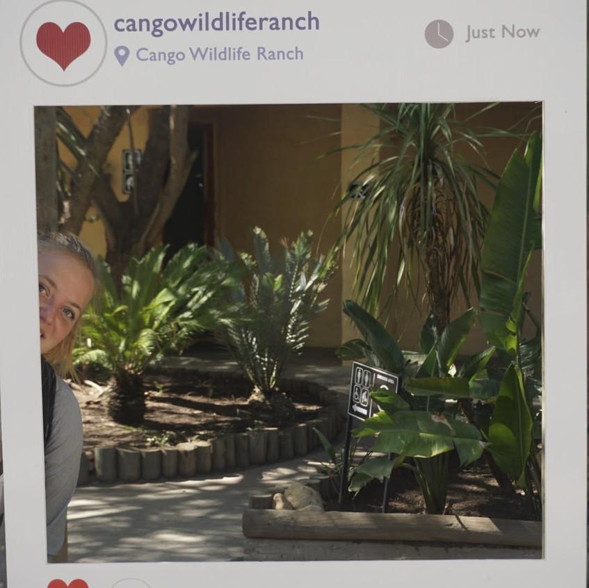 Cango Wildlife Reserve