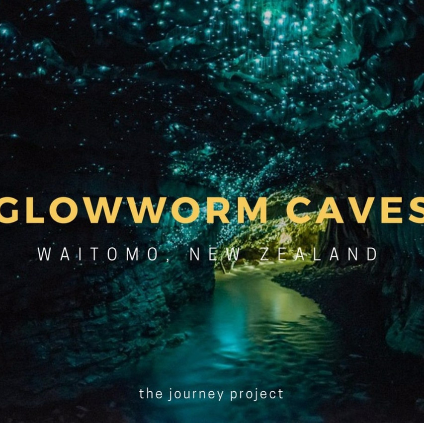 Visit the Glowworm Caves