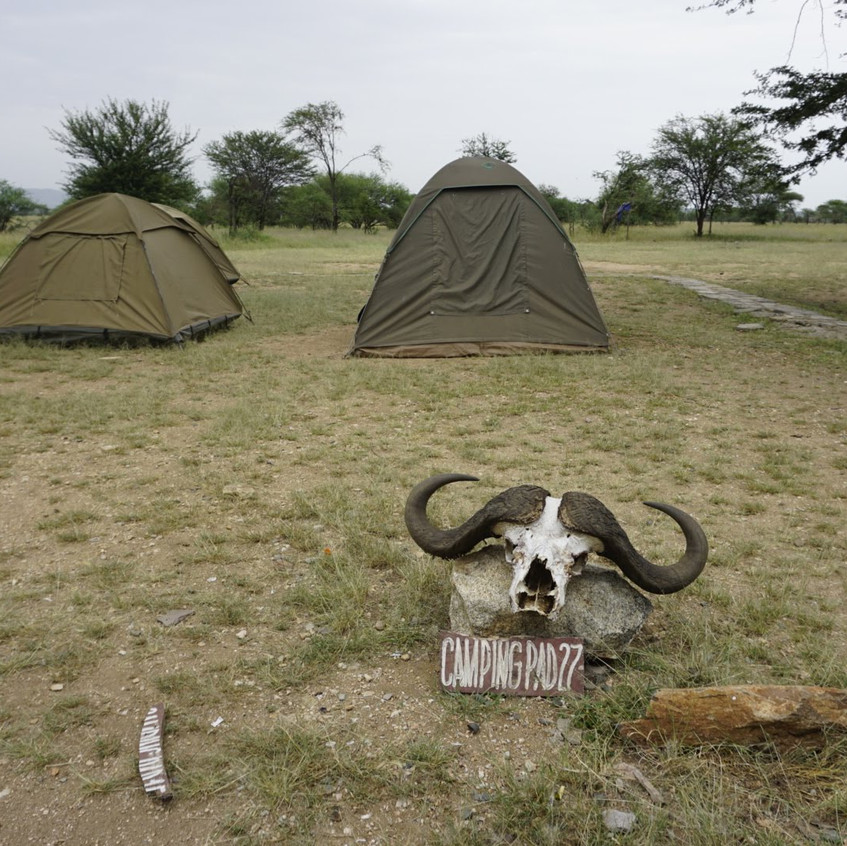 Campsite in Serengeti National Park