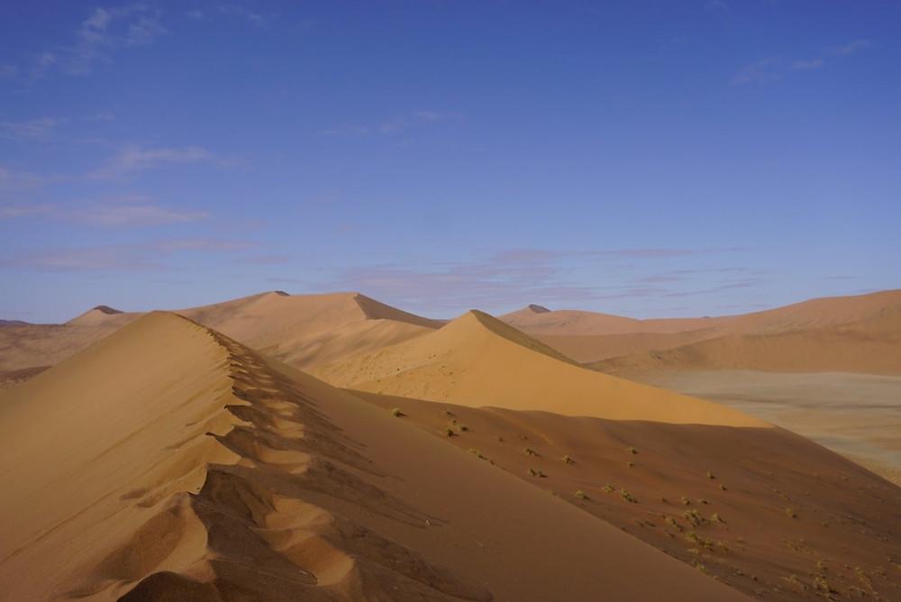 Dune 45 at Sossuvlei in Namibia