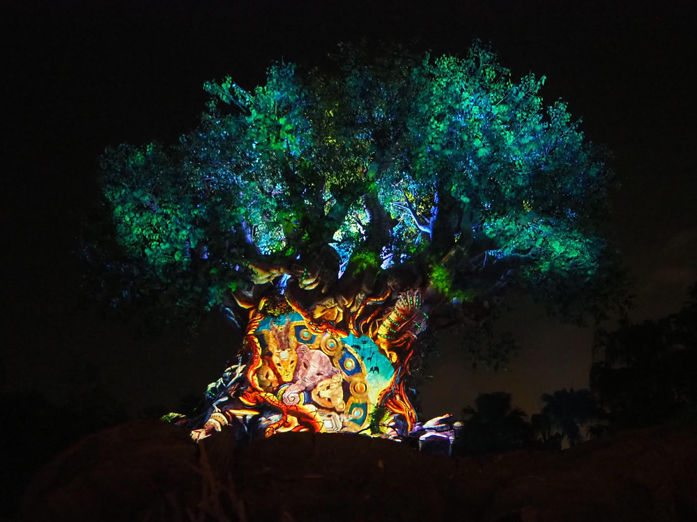 Tree of Life Awakenings Animal Kingdom Disney World