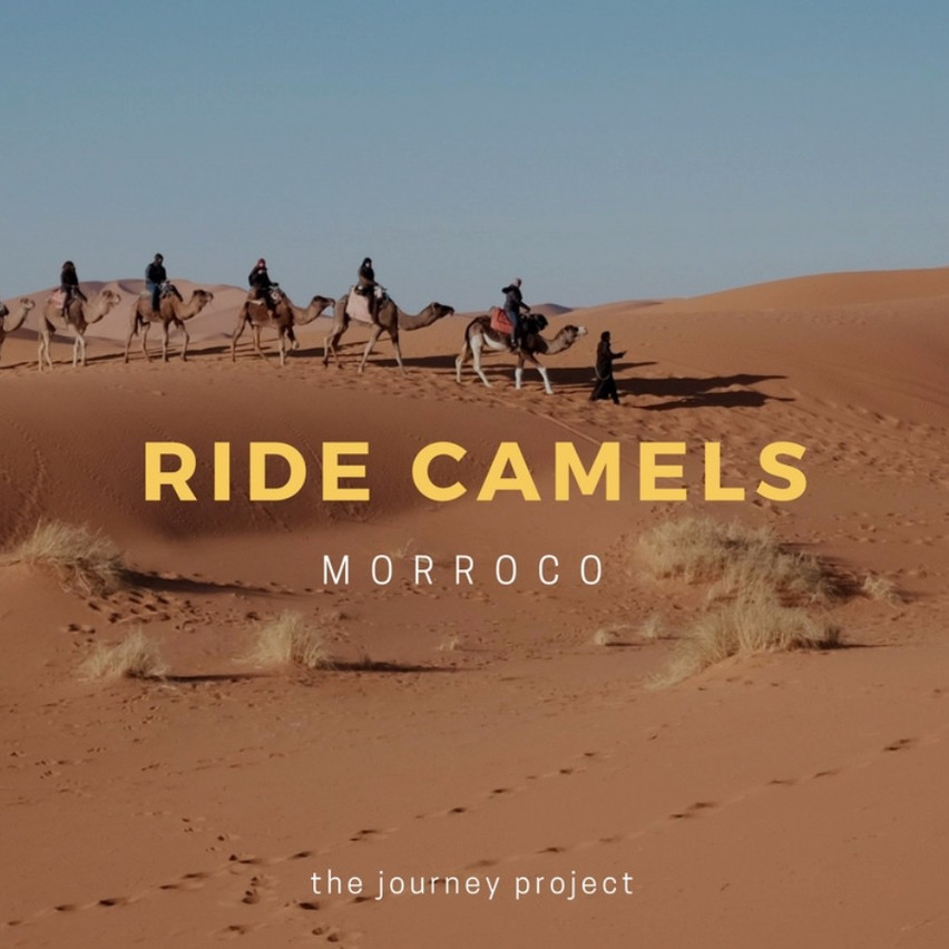 Ride Camels in Morroco