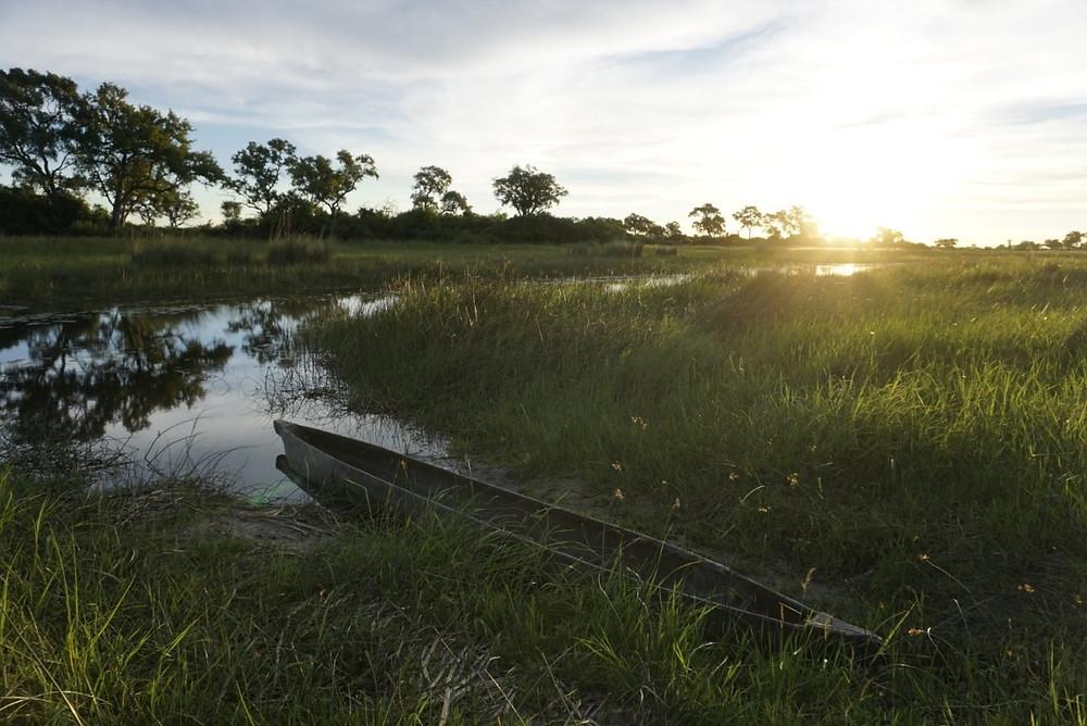 Mokoro on the Okavango Delta, Botswana