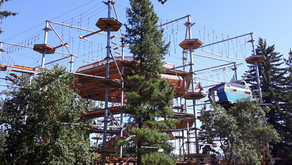 A DAY AT EDMONTON'S SNOW VALLEY AERIAL PARK