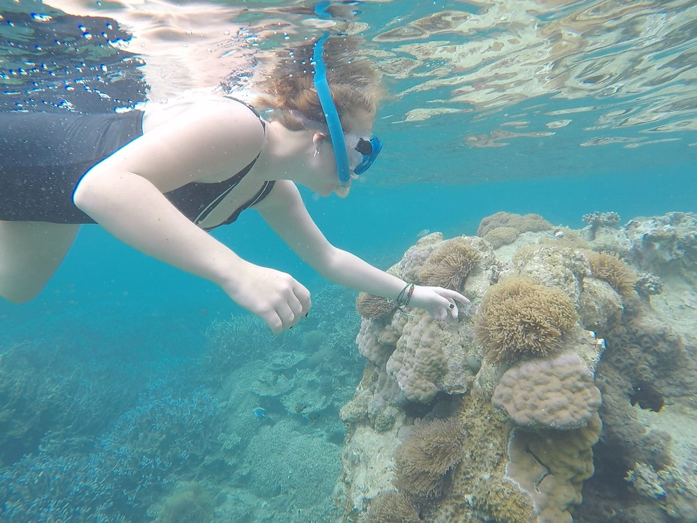 Missy snorkelling with anemone
