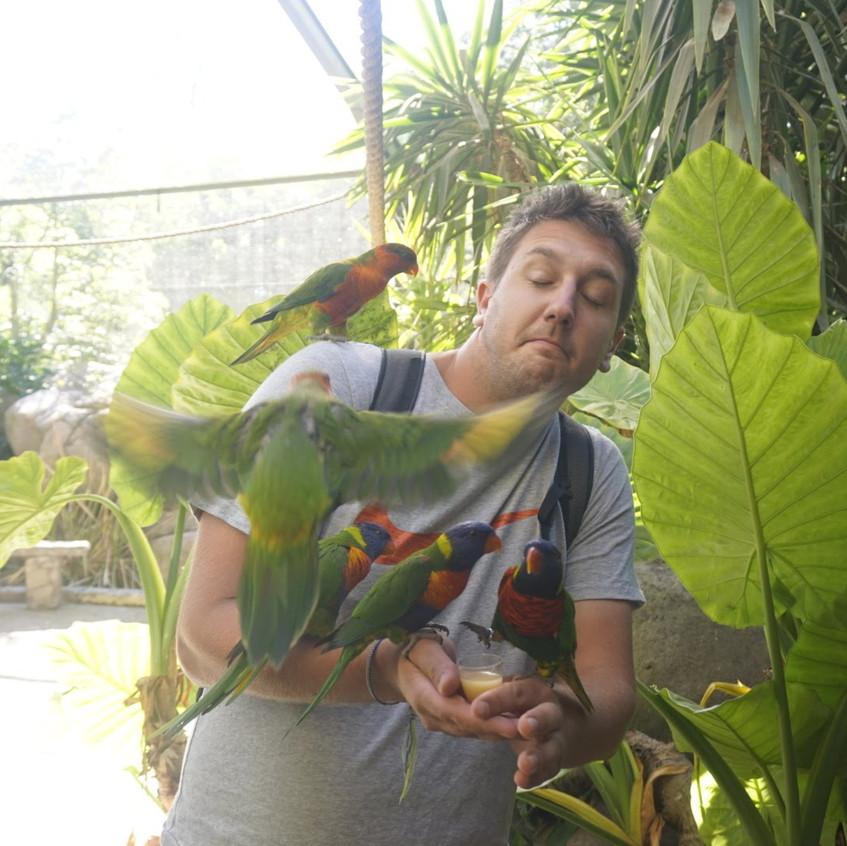 Lucas feeding birds at Cango Wildlife Reserve
