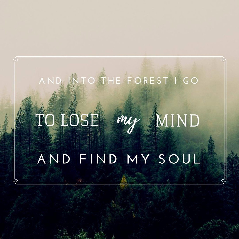 Travel quote: And into the forest I go, to lose my mind and find my soul.