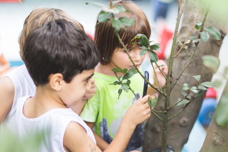 """Crianças investigam, com a lupa, pequenos insetos que encontraram vivendo no tronco da árvore. O conhecimento acontece na relação e no diálogo sem fim com o subjetivo e o objetivo; o que """"está dentro"""" e o que """"está fora""""."""