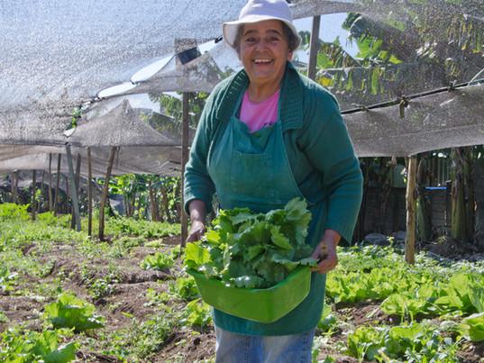 Mulheres na agricultura urbana de São Paulo