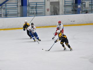 Открытое первенство Московской области по хоккею