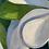 Thumbnail: Unframed -  Dancing Magnolias   36 x 24 Oil on Canvas
