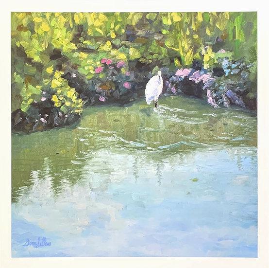 Print - Serene Waters