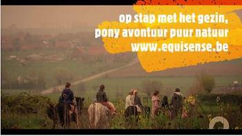 pony avontuur