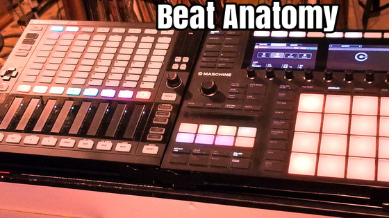 BEAT ANATOMY SESSION 2