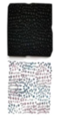 joggles-cat-kerr-foam-stamp-brushstrokes