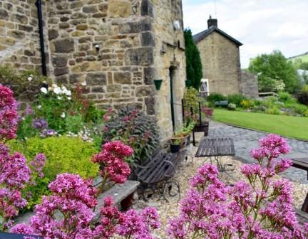 The Old Grammar School Garden (photo's taken by Margaret Brown)