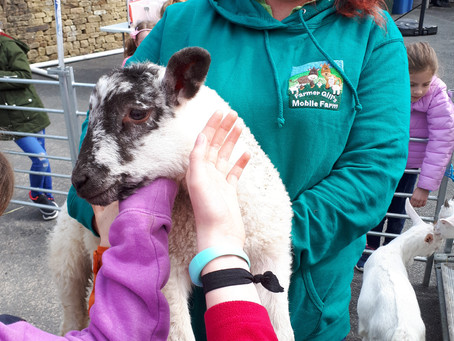 Photos from Lothersdale Out of School and Holiday Club