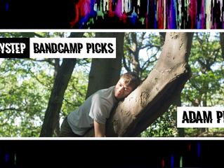 BabyStep Bandcamp Picks: Adam Pits