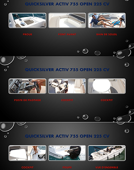 Quicksilver 755 Activ Open 225 CV.png