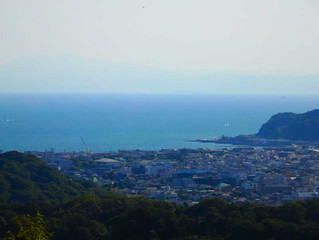 午後、六国見山から天園を歩いてきました