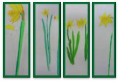 Spring Daffodills