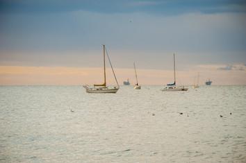 central coast-352.jpg