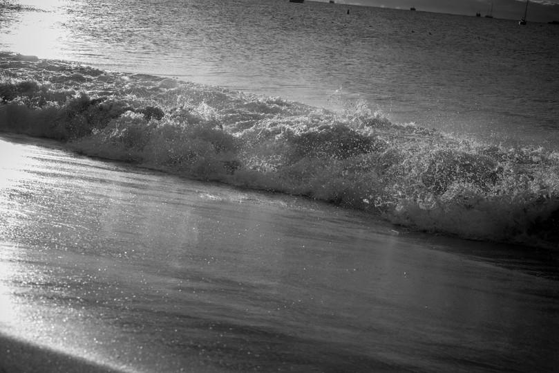 central coast-341.jpg