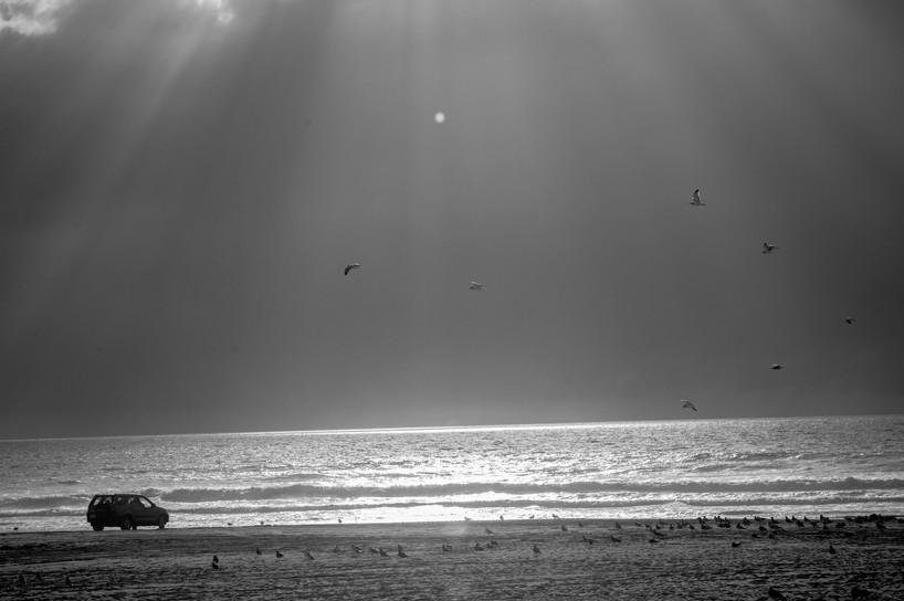 central coast-224.jpg