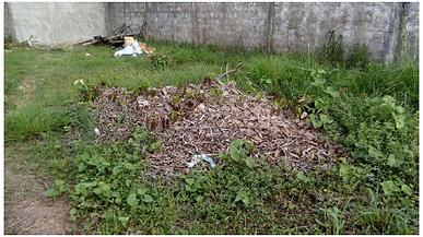 Diagnóstico dos resíduos sólidos em uma instituição de ensino superior