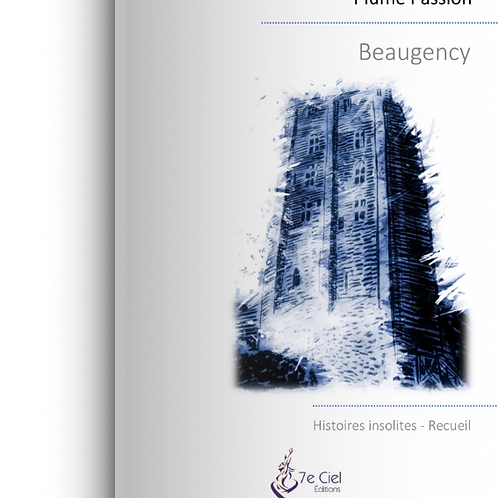 Beaugency - Histoires insolites