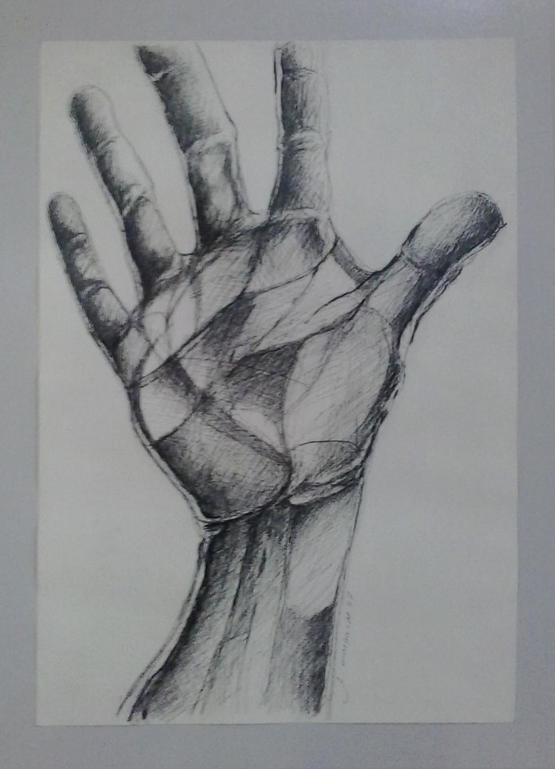 Antônio Morbach - Mão, Série Nanquim, 2007. Desenho, 42.3x29.9