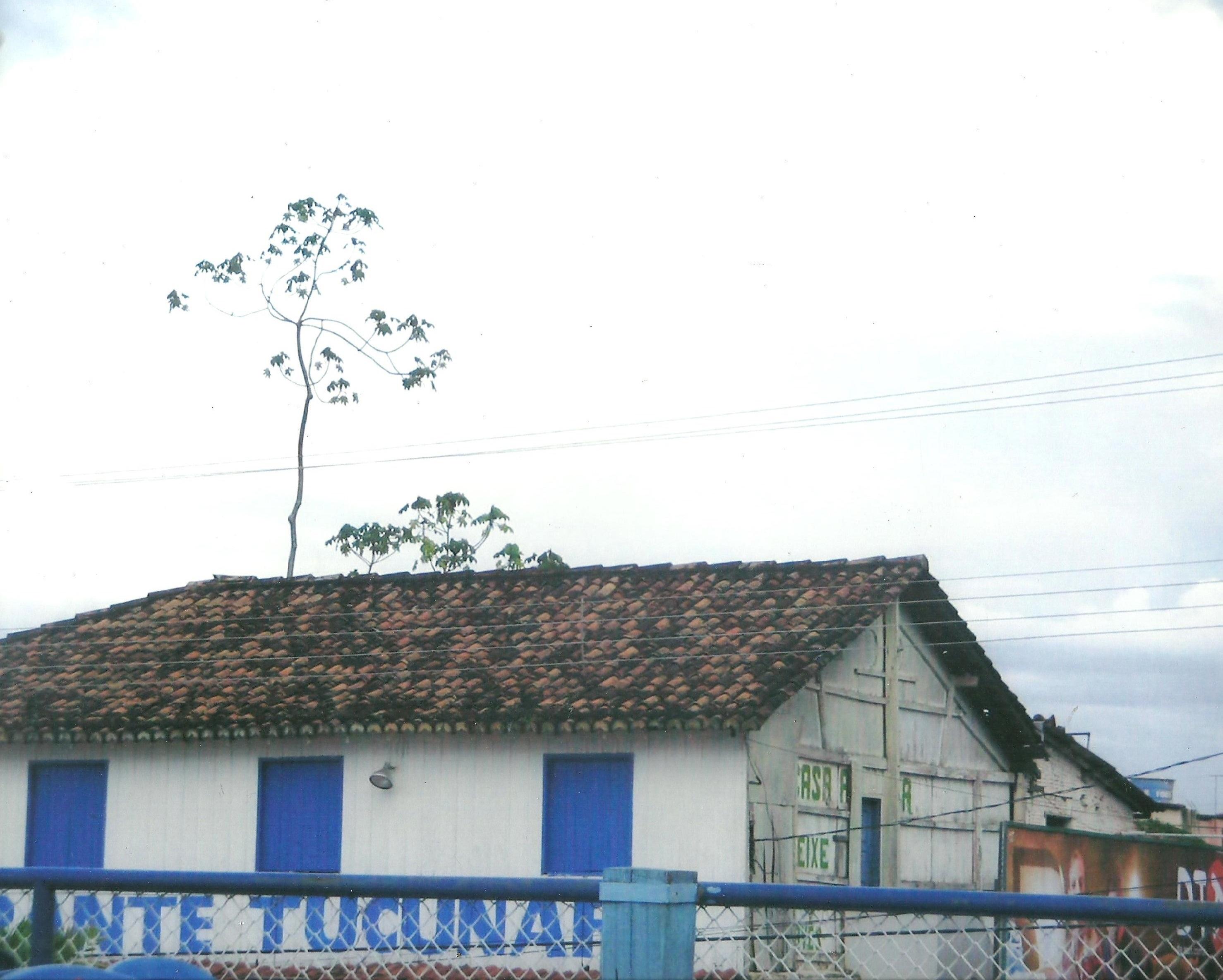 2015_VI_56_Lembranças_arquitetônicas_Suely_Gomes