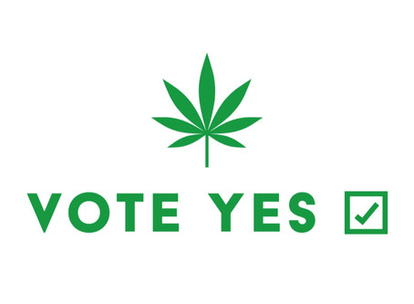 Zeacann urges a positive Yes vote in New Zealand's cannabis referendum