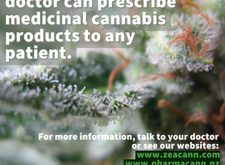 New Zealand's medicinal cannabis scheme takes effect today - here is what it means.
