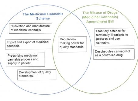 NZ's new medicinal cannabis scheme must address these issues