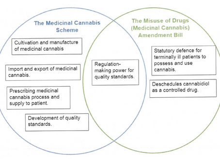 NZ's new medicinal cannabis scheme must address these issues