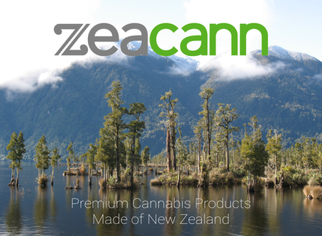 Canada legalises cannabis today – a huge opportunity for New Zealand, says Zeacann