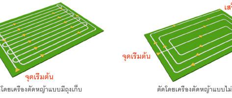 วิธีตัดหญ้าสนามหญ้า