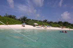 Thoddoo Tourist beach1.JPG