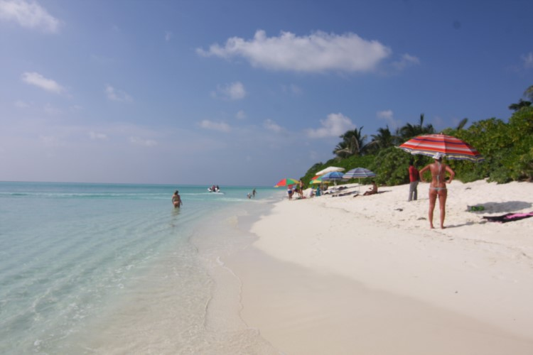 Thoddoo Tourist beach.JPG