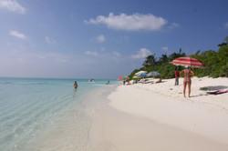 Thoddoo Tourist beach.JPG