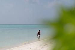 thoddoo beach2.jpg
