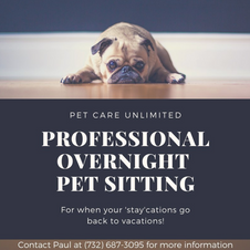Overnight Pet Sitter Post
