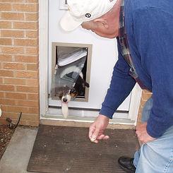 Hale Pet door install, wichita handyman