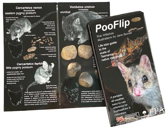poo flip