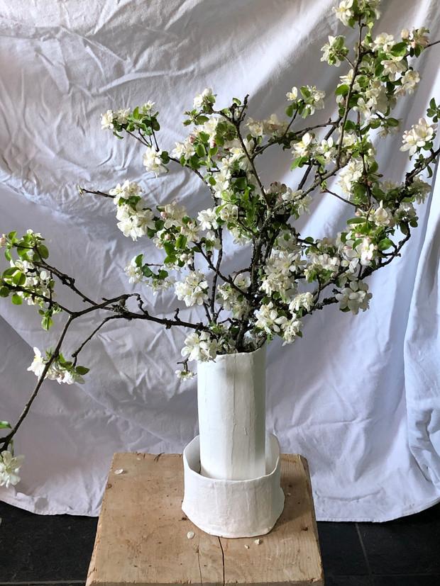 Quarantine vase