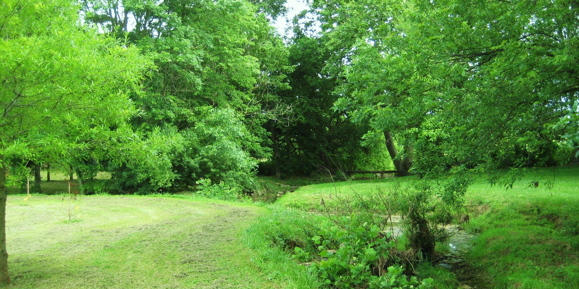 Lykins Creek.JPG