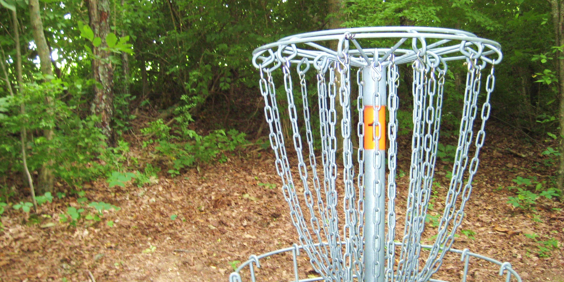 Disc Golf Hole.JPG
