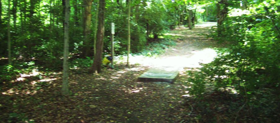 Disc Golf Course Trail 11.JPG