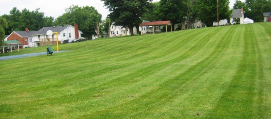 Fairfield Grass.JPG